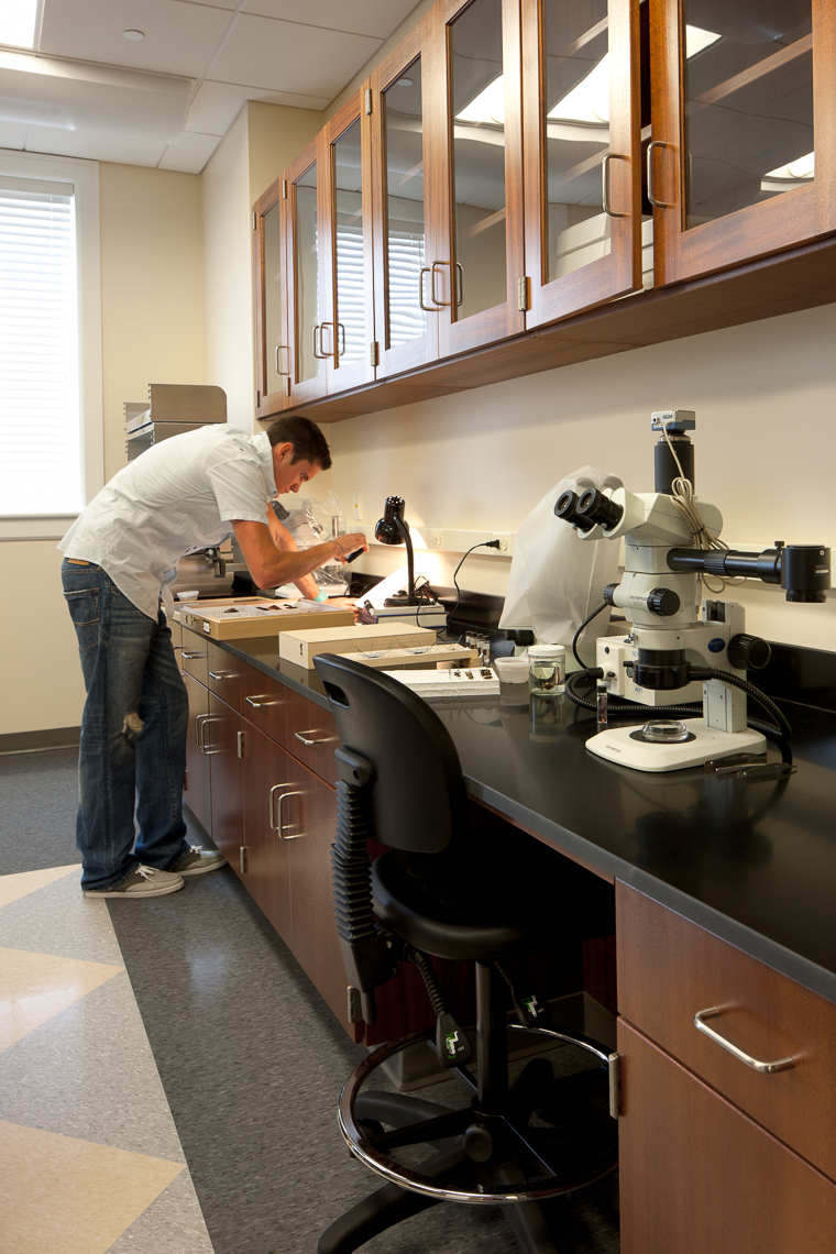 Virginia Hamrick Photography - CNU Graduate Student Scientific Research Lab - Academia